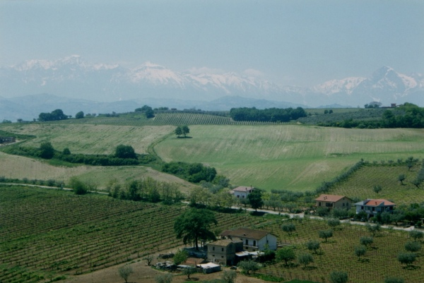 From a cousin's house in Morro D'Oro, Teramo, looking back towards the mountains.