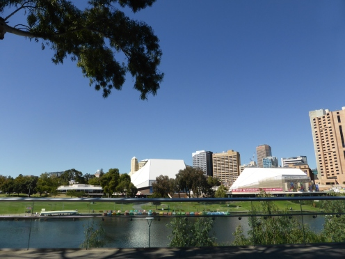 Autumn glory on the Torrens River.