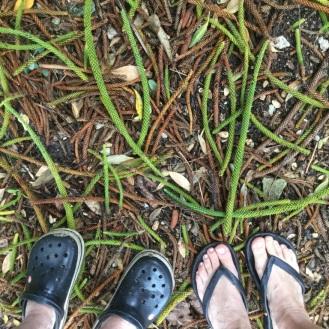 Island 'dress' footwear.